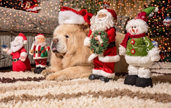 20 Best Christmas Wallpapers