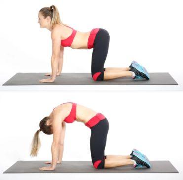 How to do Cat cow stretch pose